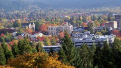 Fall Colors in Downtown Eugene