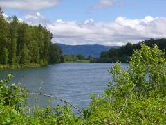 Willamette River with Coburg Hills