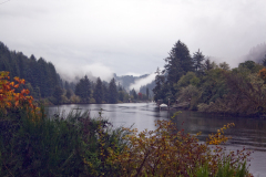 Fall on the Siuslaw River