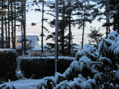 Snow on the Coast!