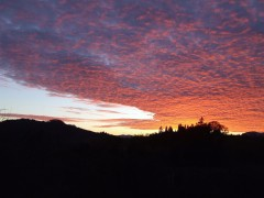 WOW WOW SUNSET Historic Oakland Oregon