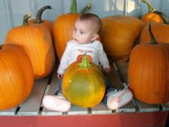 Erin in the pumpkins!