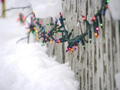 YouNews Nation: Sights of the Season