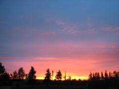 Willamette Valley Sunset
