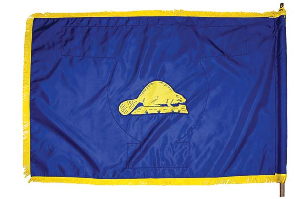 State of Oregon flag (back)