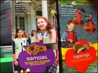 Girl Scouts robbed of cookie cash