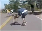 Skateboarder's collision with a deer caught on camera