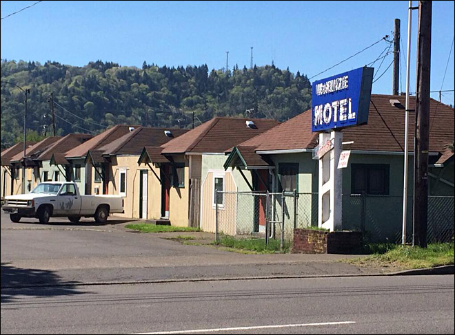 Police identify woman that died in Springfield motel fire