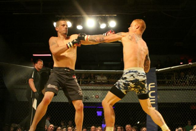 pedersen fighting (9)