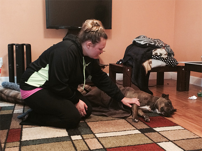 Dog shot in head by police lives; family can't afford vet care
