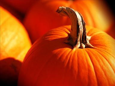 Pumpkin and pumpkin seeds health information and recipes